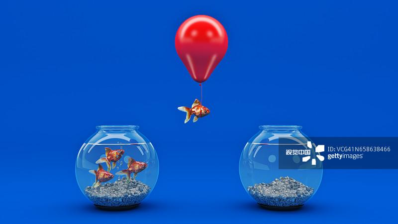 Gold fish flying away from a fishbowl with the help of a balloon.创意图片素材 -